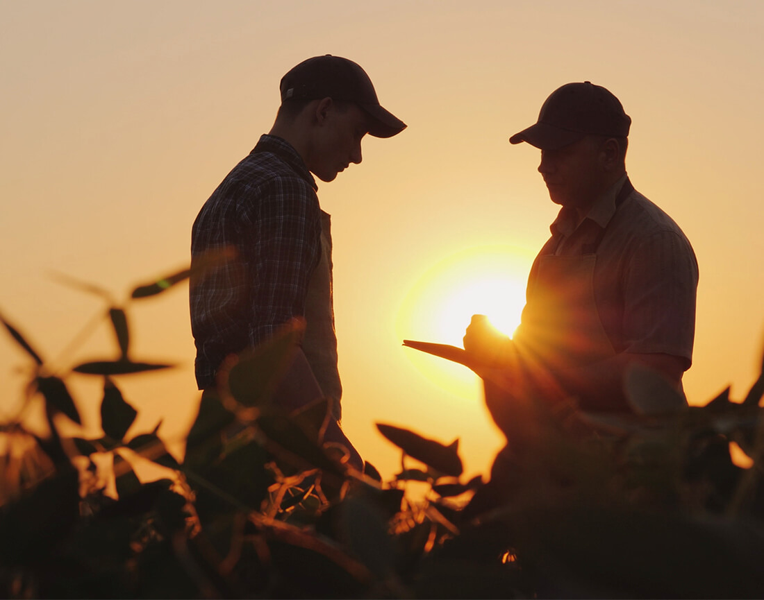 fazendeiros-conversando